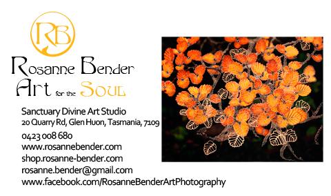 Rosanne Bender Online Business Card - 2014