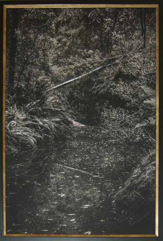 Changes - Snug River