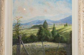 The little plains above Weldborough